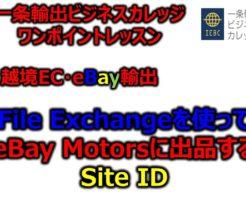 eBayモーターズ